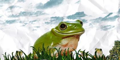 Nescafé 3in1 – Frog overpass